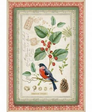 Hartie de orez pentru decoupage A4 - Winter Botanic little bird on holly DFSA4326