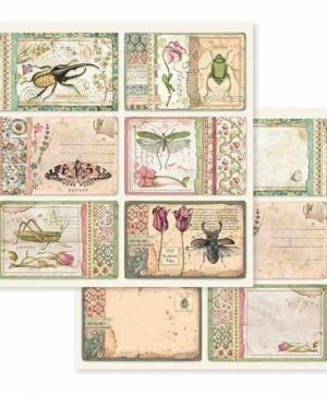 "Double face scrap paper 12""x12"" - Spring Botanic cards SBB590"